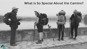 What is so special about the Camino?