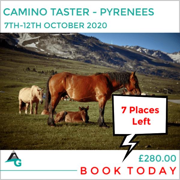 camino pyrenees (10)