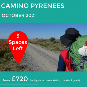 Camino Pyrenees walking holiday October 2021